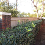 brick and wood fence project